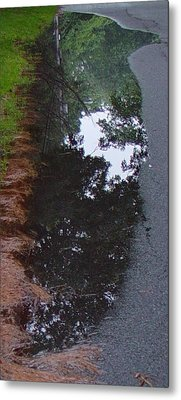 Big Crow Puddle Metal Print by Ron Sylvia