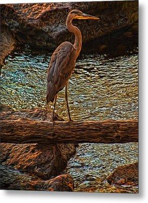 Big Falls Blue Heron Metal Print