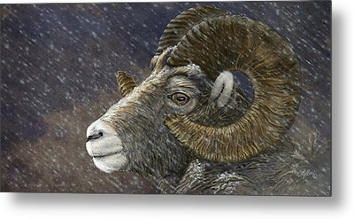 Big Horn In Snowstorm Metal Print