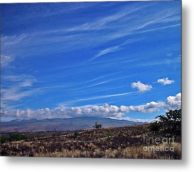 Big Island Landscape 3 Metal Print by Bette Phelan