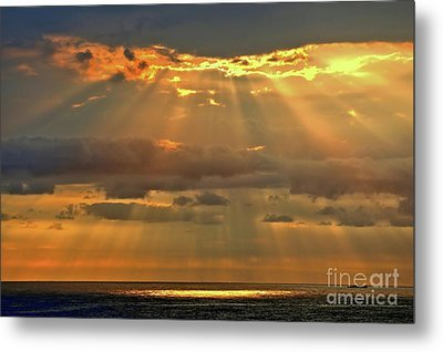 Metal Print featuring the photograph Big Island Rays by DJ Florek