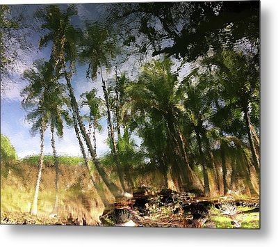 Big Island Reflections Metal Print by Art Shimamura