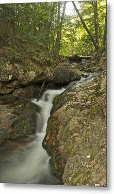 Big Pup Falls 4 Metal Print by Michael Peychich