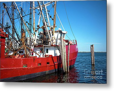 Metal Print featuring the photograph Big Red In Barnegat Bay by John Rizzuto