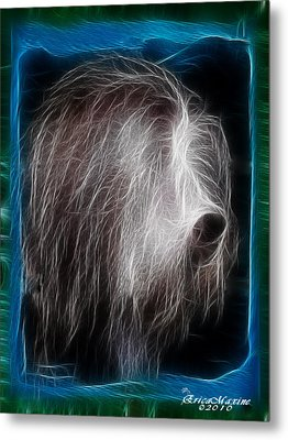 Metal Print featuring the photograph Big Shaggy Dog by EricaMaxine  Price