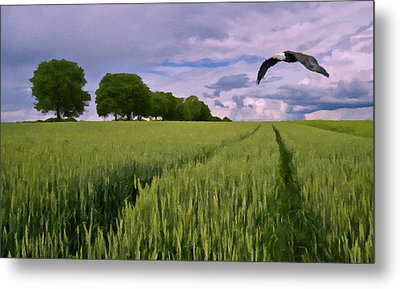 Metal Print featuring the photograph Big Sky by David Dehner