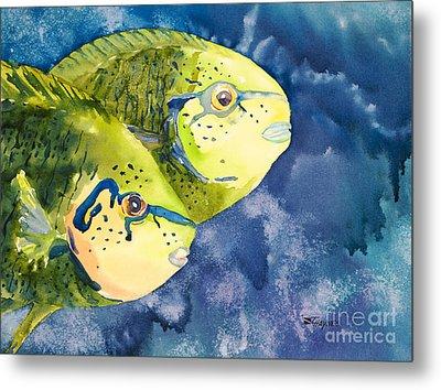 Bignose Unicornfish Metal Print by Tanya L Haynes - Printscapes