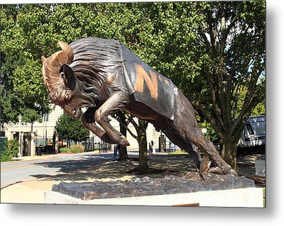 Bill The Goat - Usna Metal Print