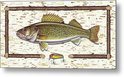 Birch Walleye Metal Print