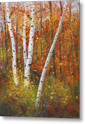 Birches Metal Print by Garry McMichael