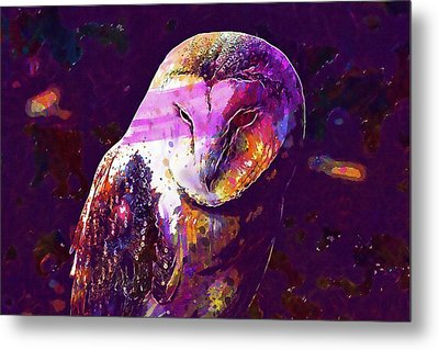 Metal Print featuring the digital art Bird Barn Owl Owl Barn Animal  by PixBreak Art