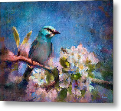 Bird Blue Metal Print by Chuck Underwood
