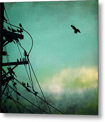 Bird City Revisited Metal Print by Trish Mistric