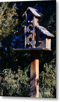Bird Condos Metal Print by Robert WK Clark