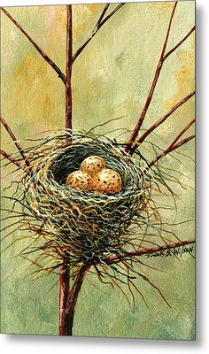 Bird Nest Metal Print