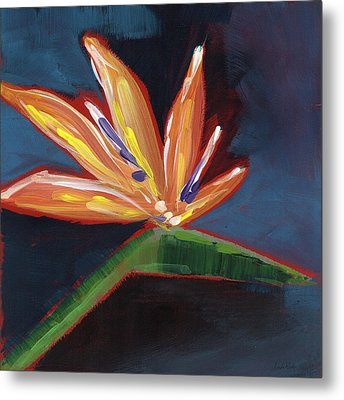 Bird Of Paradise- Art By Linda Woods Metal Print by Linda Woods