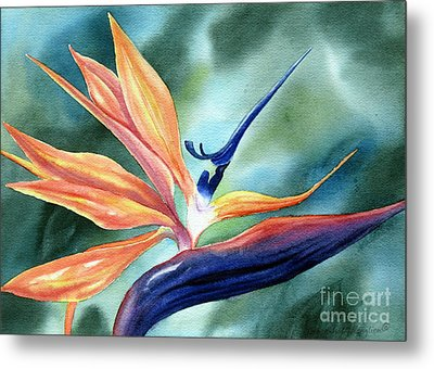 Bird Of Paradise Metal Print by Deborah Ronglien