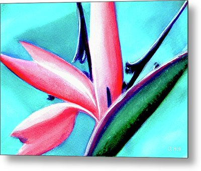 Bird Of Paradise Flower #290 Metal Print by Donald k Hall