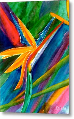 Bird Of Paradise Flower #66 Metal Print by Donald k Hall