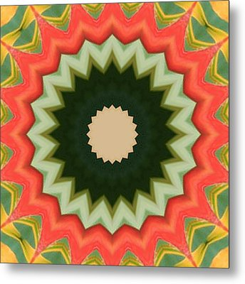 Metal Print featuring the photograph Bird Of Paradise Kaleidoscope by Bill Barber