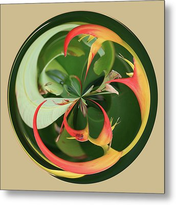 Metal Print featuring the photograph Bird Of Paradise Orb by Bill Barber