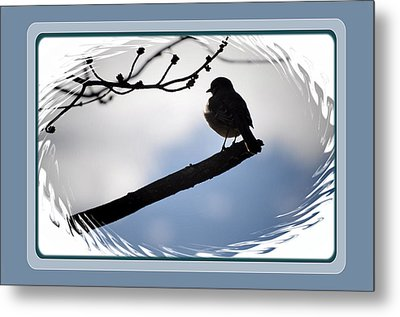 Bird On A Branch Metal Print by Russ Mullen