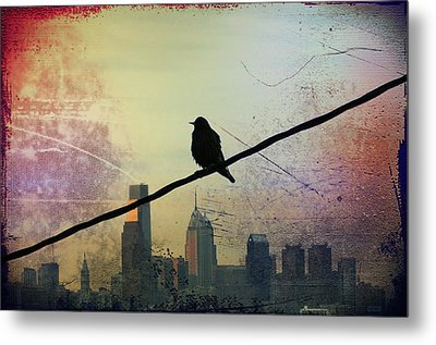 Bird On A Wire Metal Print by Bill Cannon