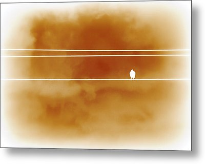 Bird On A Wire Orange Metal Print by Christina Lihani
