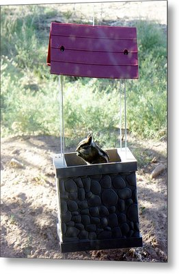 Bird Seed Thief Chipmunk Metal Print by Joseph Frank Baraba