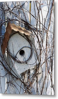 Birdhouse Brambles Metal Print by Lauri Novak