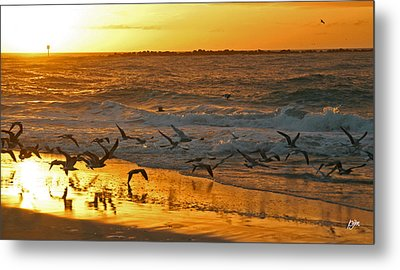 Metal Print featuring the photograph Birds At Sunrise by Phil Mancuso