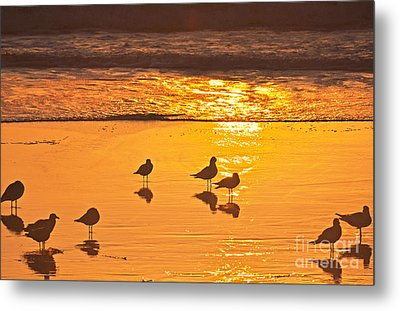 Birds At Sunset Metal Print by Loriannah Hespe