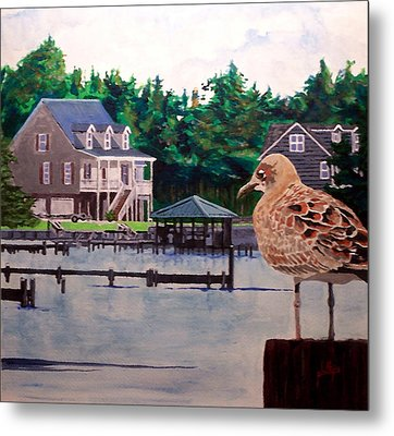 Metal Print featuring the painting Birds Eye View by Jim Phillips