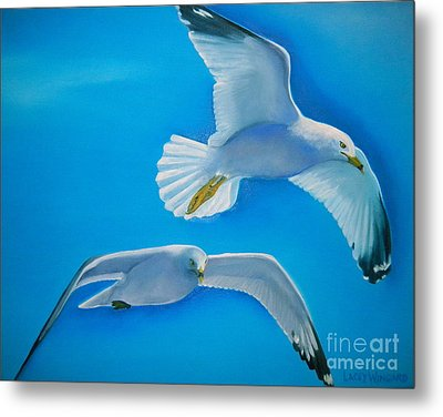 Birds Eye View Metal Print by Lacey Wingard