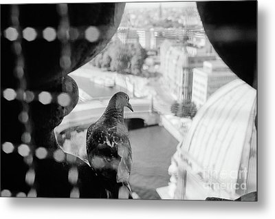 Metal Print featuring the photograph Bird's Eye View Of Berlin by Dean Harte