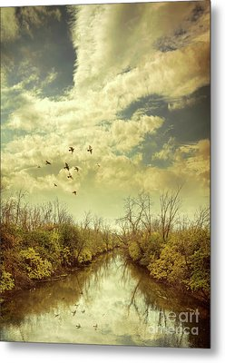Metal Print featuring the photograph Birds Flying Over A River by Jill Battaglia