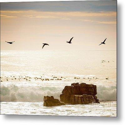Birds Flying Over Ocean Metal Print by Tim Hester