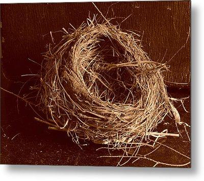 Bird's Nest Sepia Metal Print