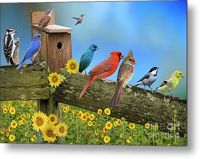 Metal Print featuring the photograph Birds Of A Feather by Bonnie Barry