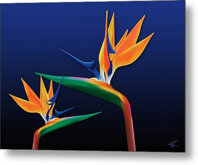 Birds Of Paradise Metal Print by Kenneth Armand Johnson