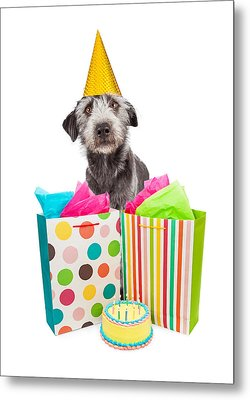 Birthday Party Dog Presents And Cake Metal Print by Susan Schmitz