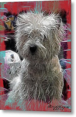 Metal Print featuring the photograph Bishon Frise by EricaMaxine  Price