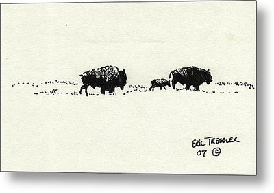 Bison Family Metal Print by Eric Tressler
