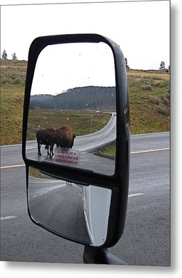 Bison In My Rear View Metal Print