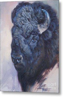 Bison Study Metal Print
