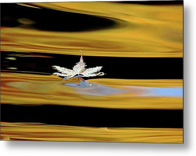 Black And Gold Autumn Abstract Metal Print by Debbie Oppermann