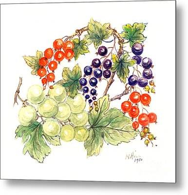 Black And Red Currants With Green Grapes Metal Print