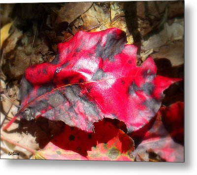 Black And Red Metal Print by Ed Smith