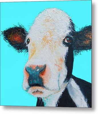 Black And White Cow On Blue Background Metal Print by Jan Matson