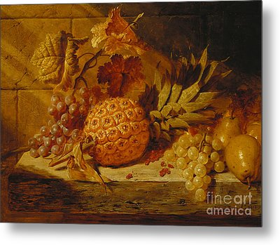 Black And White Grapes, Pears, Redcurrants And A Pineapple On A Ledge, 1845  Metal Print